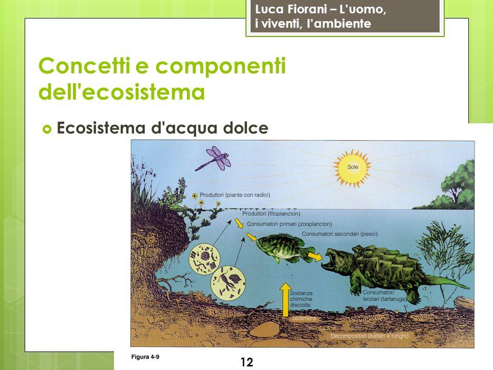 Luca Fiorani – Luomo, i viventi, lambiente Concetti e componenti dell'ecosistema Ecosistema d'acqua dolce 12