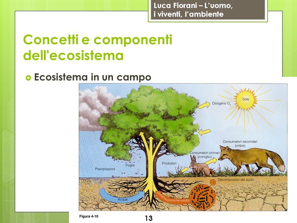 Luca Fiorani – Luomo, i viventi, lambiente Concetti e componenti dell'ecosistema Ecosistema in un campo 13