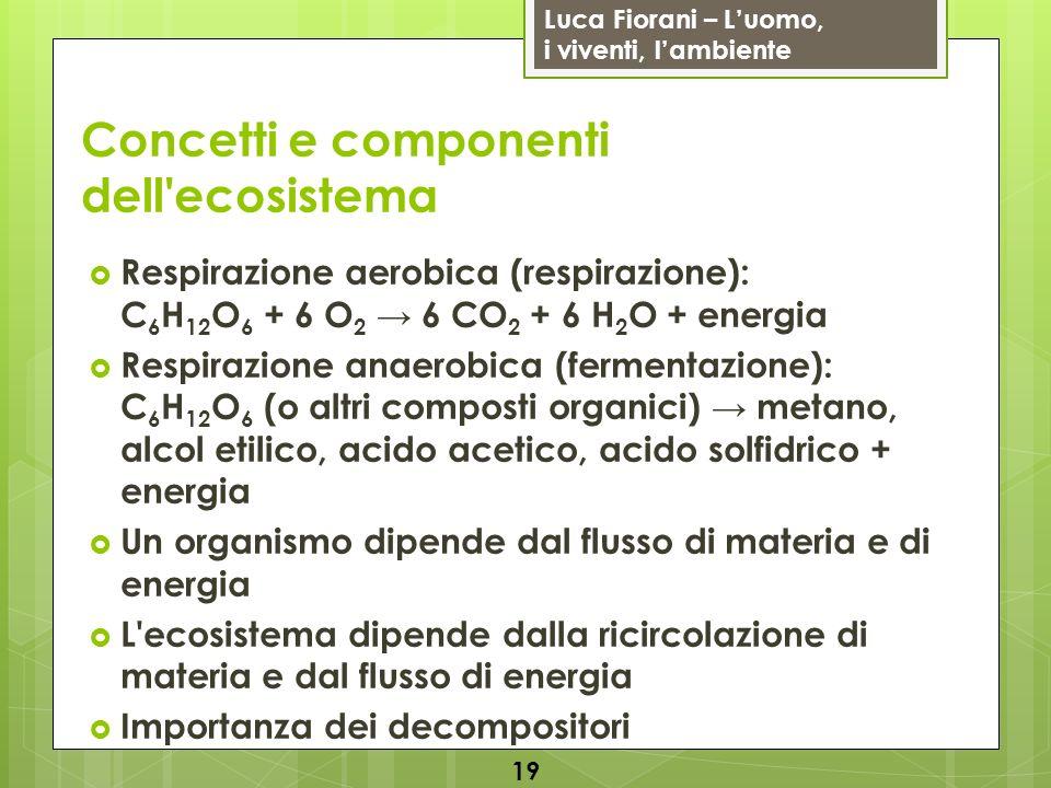 Luca Fiorani – Luomo, i viventi, lambiente Concetti e componenti dell'ecosistema Respirazione aerobica (respirazione): C 6 H 12 O 6 + 6 O 2 6 CO 2 + 6