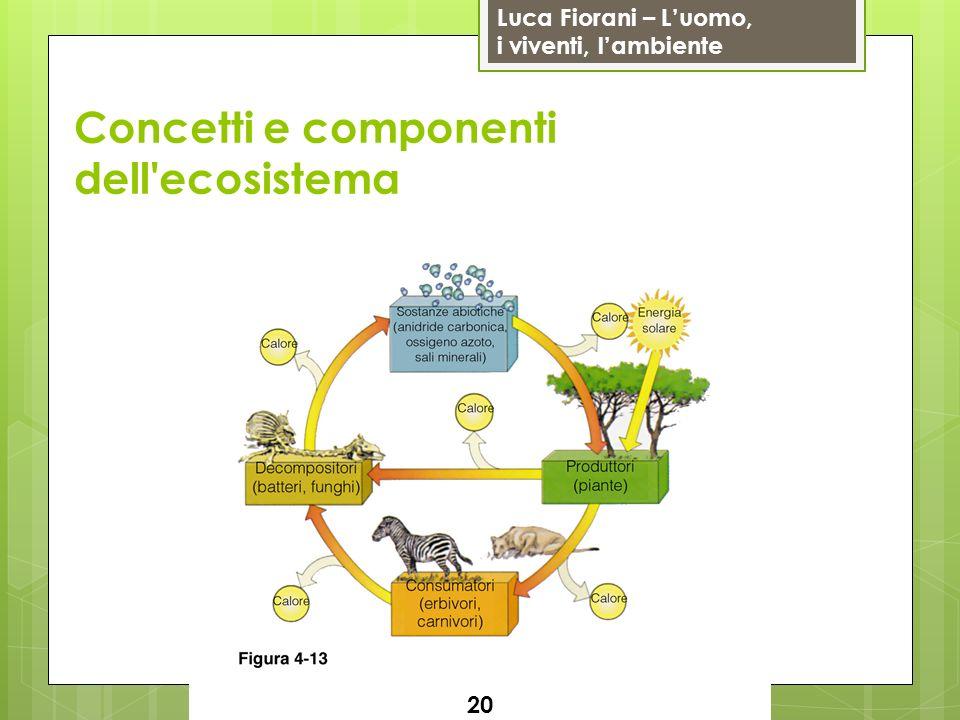 Luca Fiorani – Luomo, i viventi, lambiente Concetti e componenti dell'ecosistema 20