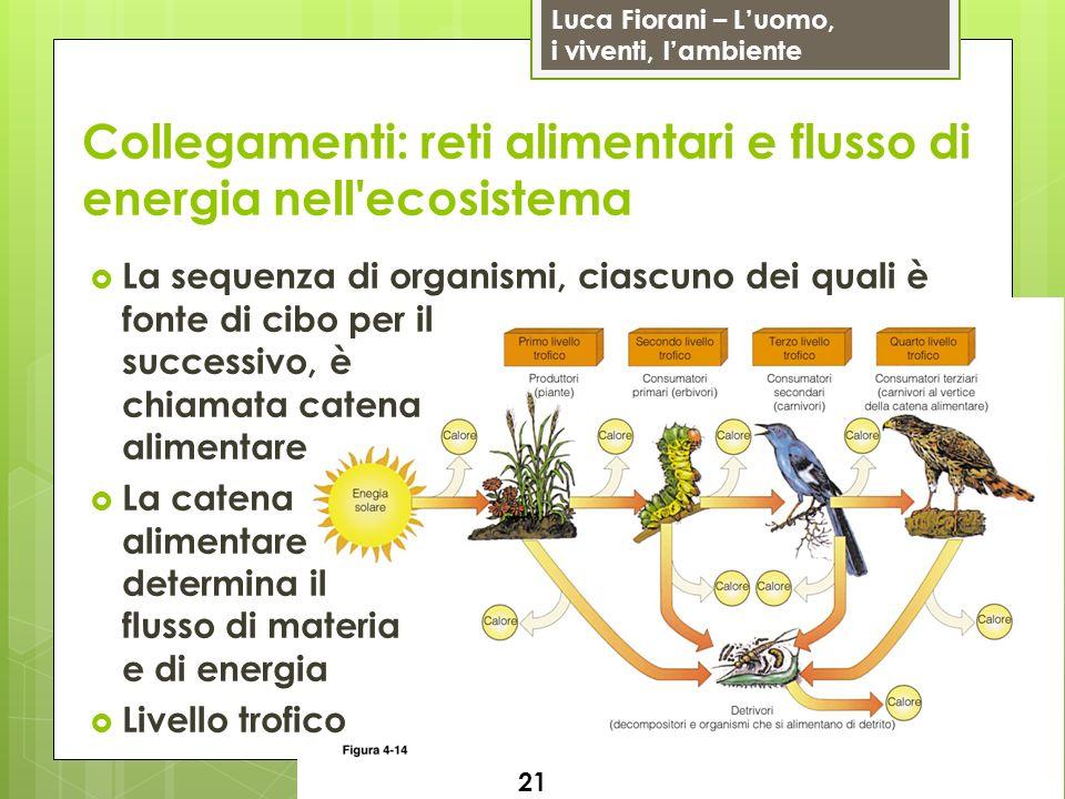 Luca Fiorani – Luomo, i viventi, lambiente Collegamenti: reti alimentari e flusso di energia nell'ecosistema 21 La sequenza di organismi, ciascuno dei