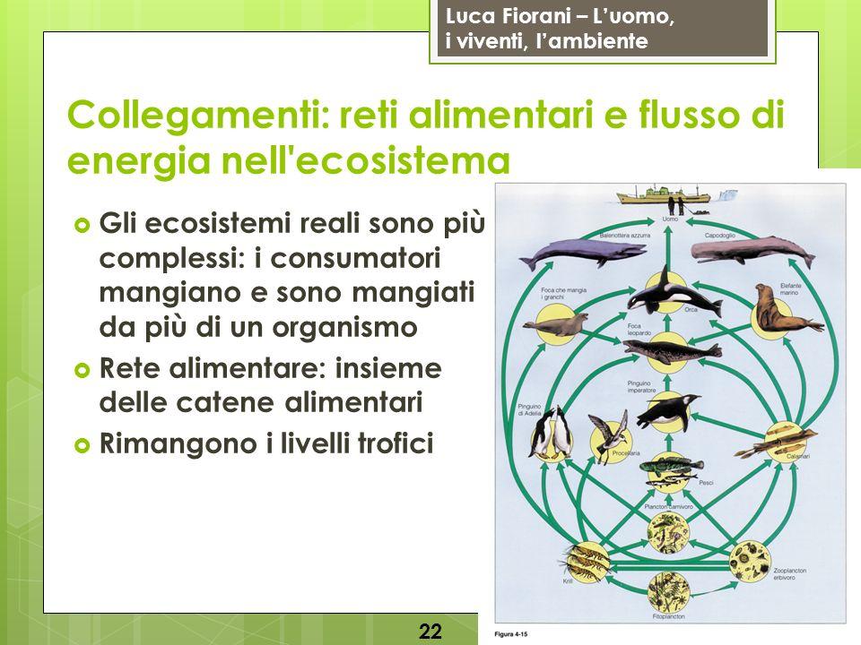 Luca Fiorani – Luomo, i viventi, lambiente Collegamenti: reti alimentari e flusso di energia nell'ecosistema 22 Gli ecosistemi reali sono più compless