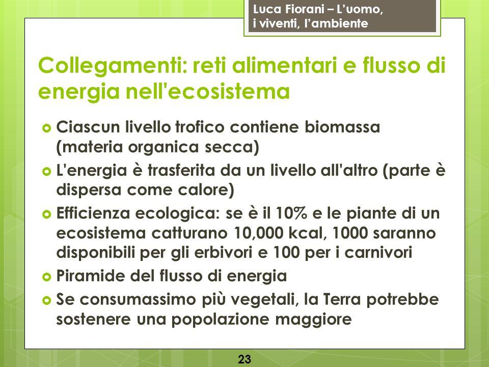 Luca Fiorani – Luomo, i viventi, lambiente Collegamenti: reti alimentari e flusso di energia nell'ecosistema 23 Ciascun livello trofico contiene bioma