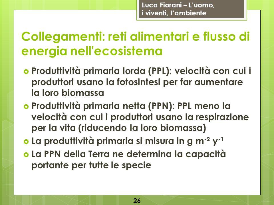 Luca Fiorani – Luomo, i viventi, lambiente Collegamenti: reti alimentari e flusso di energia nell'ecosistema 26 Produttività primaria lorda (PPL): vel