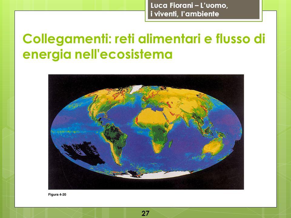 Luca Fiorani – Luomo, i viventi, lambiente Collegamenti: reti alimentari e flusso di energia nell'ecosistema 27