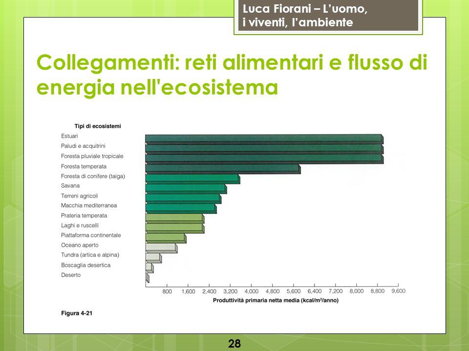 Luca Fiorani – Luomo, i viventi, lambiente Collegamenti: reti alimentari e flusso di energia nell'ecosistema 28