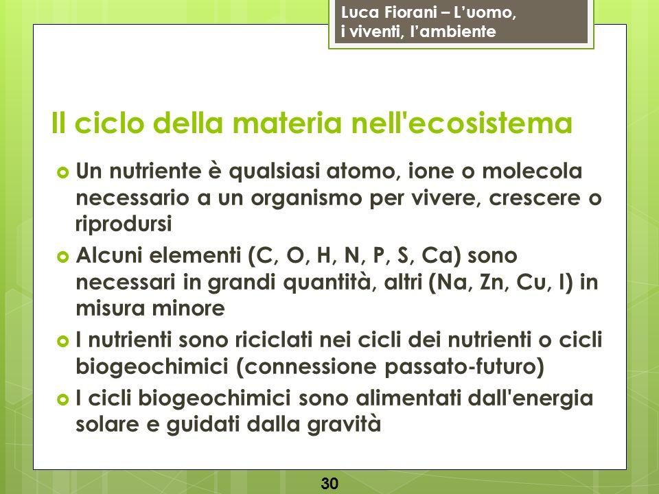 Luca Fiorani – Luomo, i viventi, lambiente Il ciclo della materia nell'ecosistema 30 Un nutriente è qualsiasi atomo, ione o molecola necessario a un o