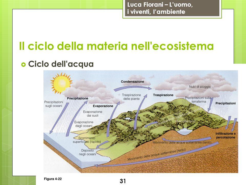 Luca Fiorani – Luomo, i viventi, lambiente Il ciclo della materia nell'ecosistema 31 Ciclo dell'acqua