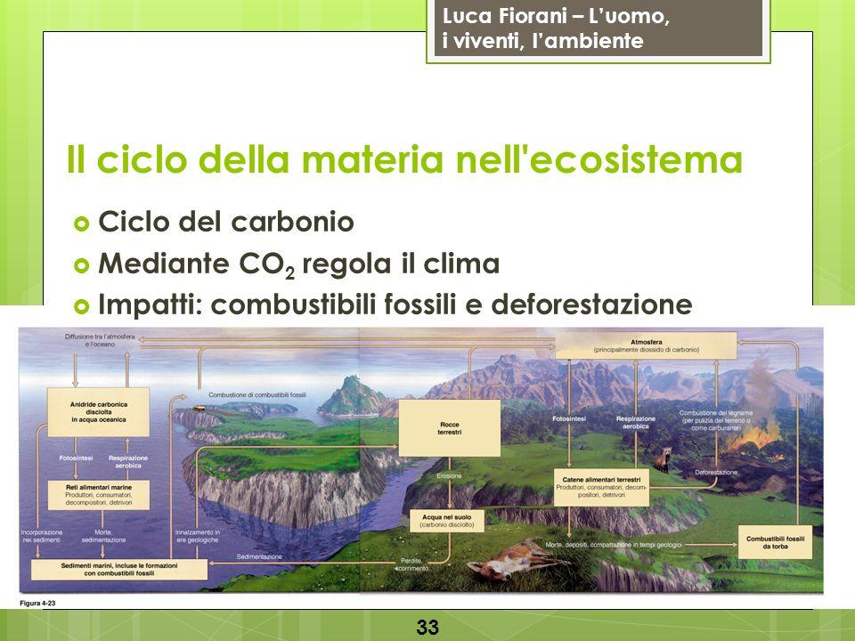 Luca Fiorani – Luomo, i viventi, lambiente Il ciclo della materia nell'ecosistema 33 Ciclo del carbonio Mediante CO 2 regola il clima Impatti: combust