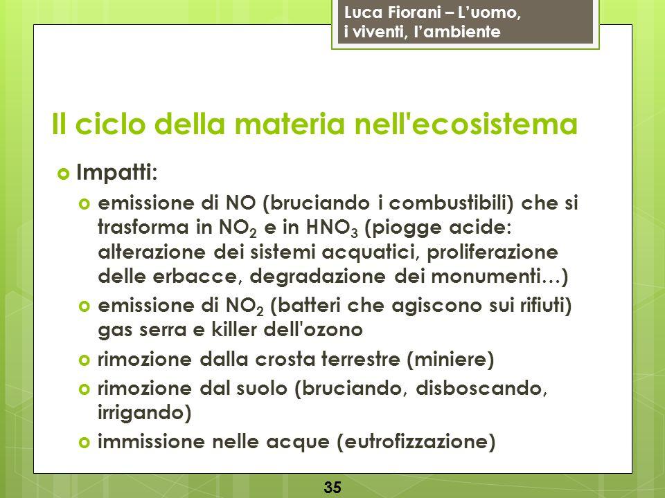 Luca Fiorani – Luomo, i viventi, lambiente Il ciclo della materia nell'ecosistema 35 Impatti: emissione di NO (bruciando i combustibili) che si trasfo