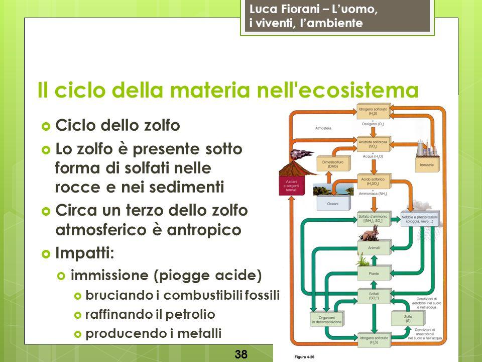 Luca Fiorani – Luomo, i viventi, lambiente Il ciclo della materia nell'ecosistema 38 Ciclo dello zolfo Lo zolfo è presente sotto forma di solfati nell