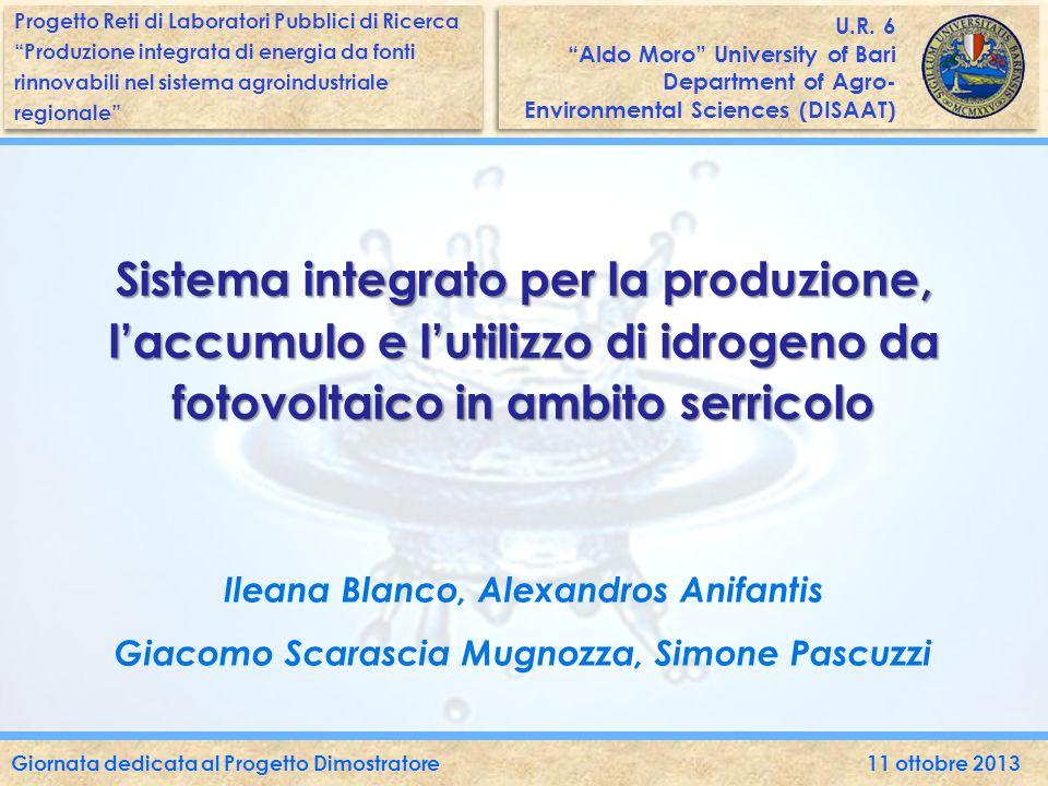 Le emissioni delle centrali termiche a servizio delle serre in Italia rilasciano in atmosfera più di 1.300.000 t CO 2 /anno.