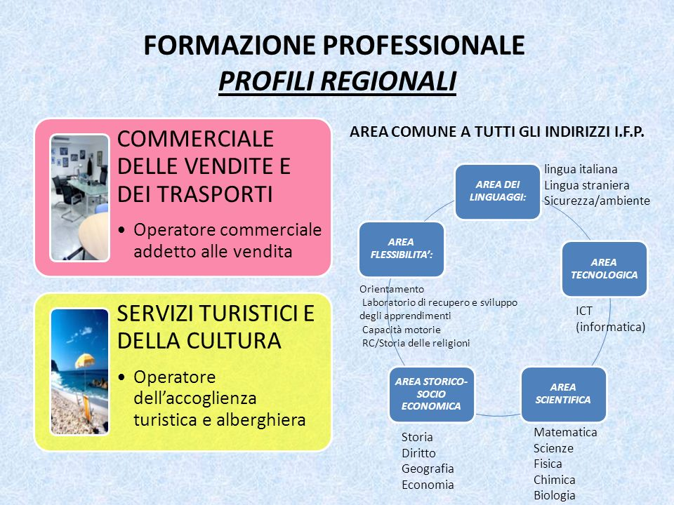 FORMAZIONE PROFESSIONALE PROFILI REGIONALI AREA COMUNE A TUTTI GLI INDIRIZZI I.F.P. COMMERCIALE DELLE VENDITE E DEI TRASPORTI Operatore commerciale ad