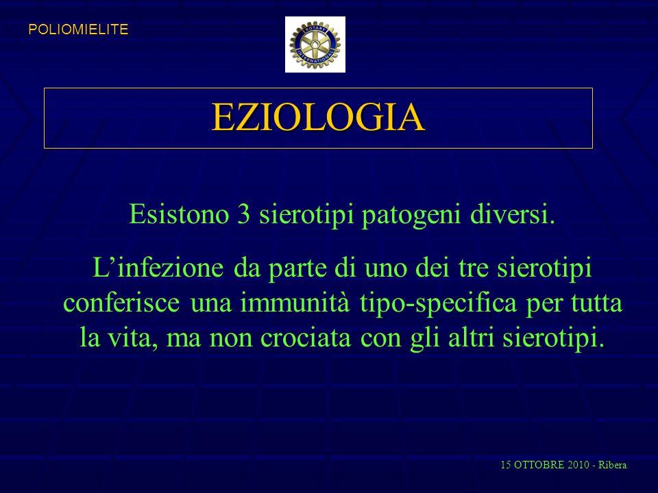 EZIOLOGIA Esistono 3 sierotipi patogeni diversi.