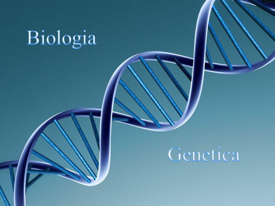 La selezione naturale, concetto introdotto da Charles Darwin nel 1859 nel libro L origine delle specie, è il meccanismo con cui avviene l evoluzione delle specie e secondo cui, nell ambito della diversità genetica delle popolazioni, si ha un progressivo (e cumulativo) aumento della frequenza degli individui con caratteristiche ottimali (fitness) per l ambiente di vita.