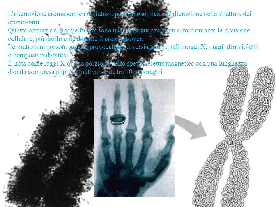 Laberrazione cromosomica o mutazione cromosomica, un'alterazione nella struttura dei cromosomi. Queste alterazioni normalmente sono una conseguenza di