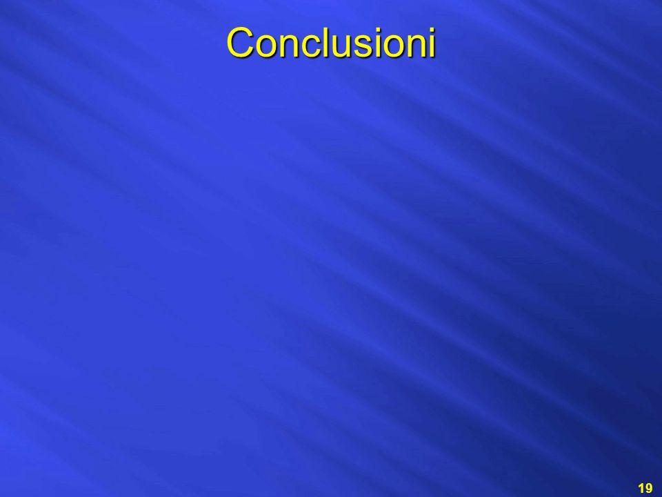 Conclusioni 19