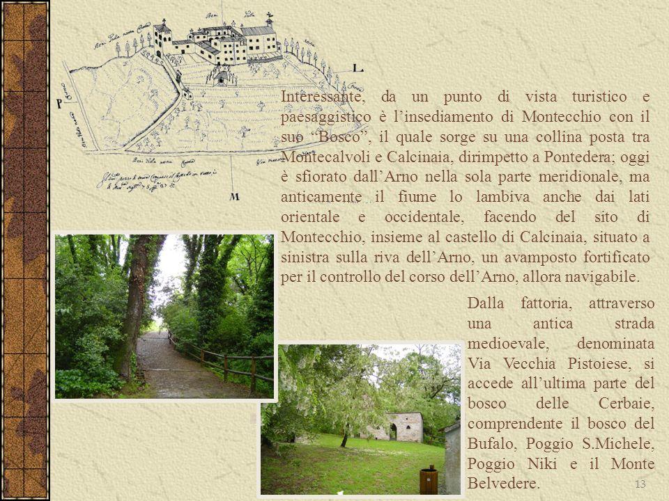 13 Interessante, da un punto di vista turistico e paesaggistico è linsediamento di Montecchio con il suo Bosco, il quale sorge su una collina posta tr