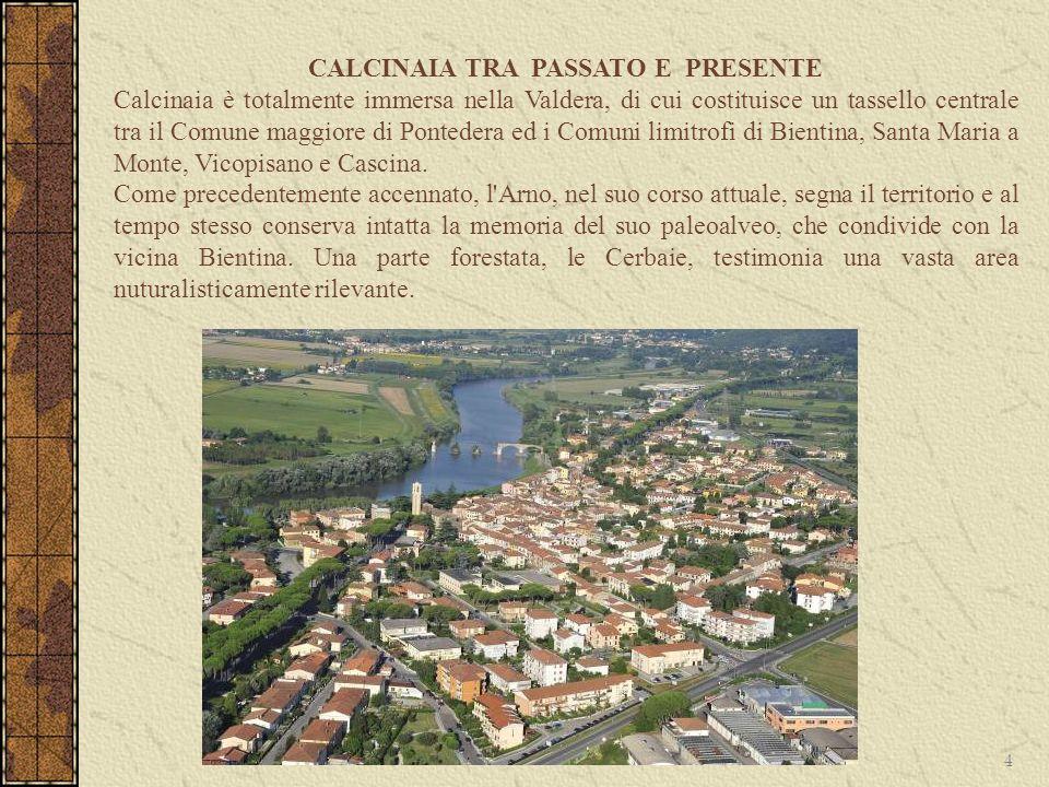 Calcinaia è totalmente immersa nella Valdera, di cui costituisce un tassello centrale tra il Comune maggiore di Pontedera ed i Comuni limitrofi di Bie