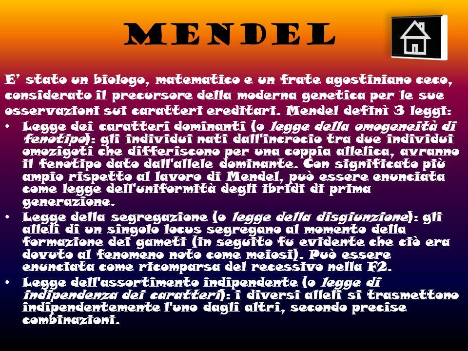 MENDEL E stato un biologo, matematico e un frate agostiniano ceco, considerato il precursore della moderna genetica per le sue osservazioni sui caratteri ereditari.