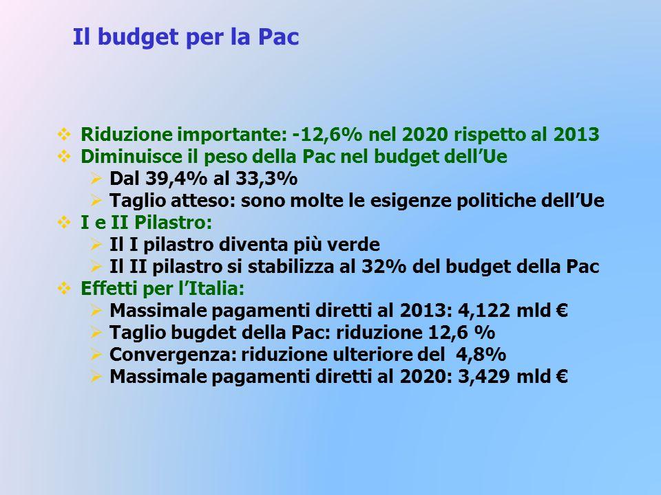Il budget per la Pac Riduzione importante: -12,6% nel 2020 rispetto al 2013 Diminuisce il peso della Pac nel budget dellUe Dal 39,4% al 33,3% Taglio atteso: sono molte le esigenze politiche dellUe I e II Pilastro: Il I pilastro diventa più verde Il II pilastro si stabilizza al 32% del budget della Pac Effetti per lItalia: Massimale pagamenti diretti al 2013: 4,122 mld Taglio bugdet della Pac: riduzione 12,6 % Convergenza: riduzione ulteriore del 4,8% Massimale pagamenti diretti al 2020: 3,429 mld