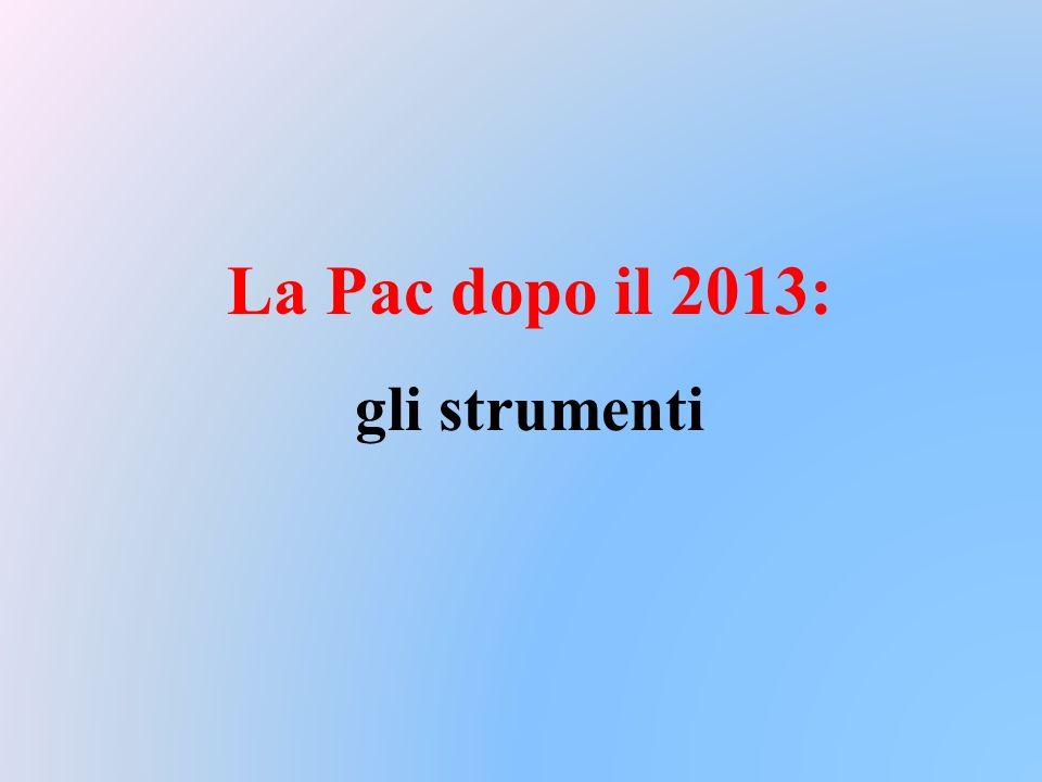 La Pac dopo il 2013: gli strumenti