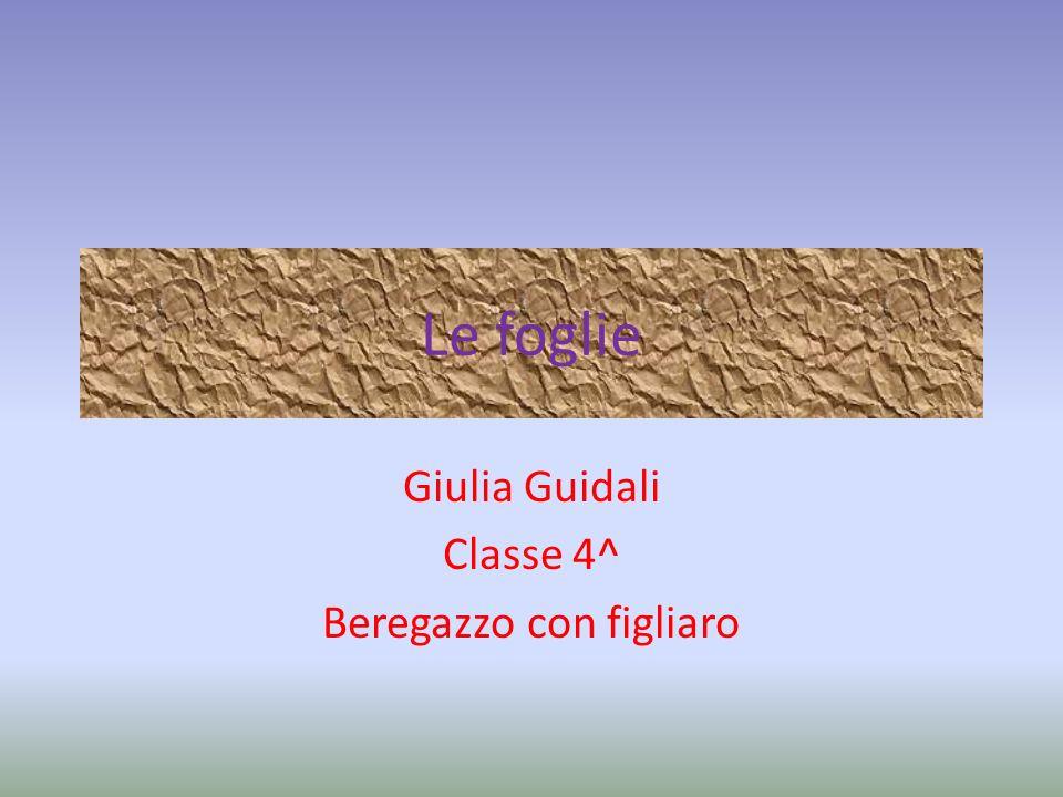 Le foglie Giulia Guidali Classe 4^ Beregazzo con figliaro