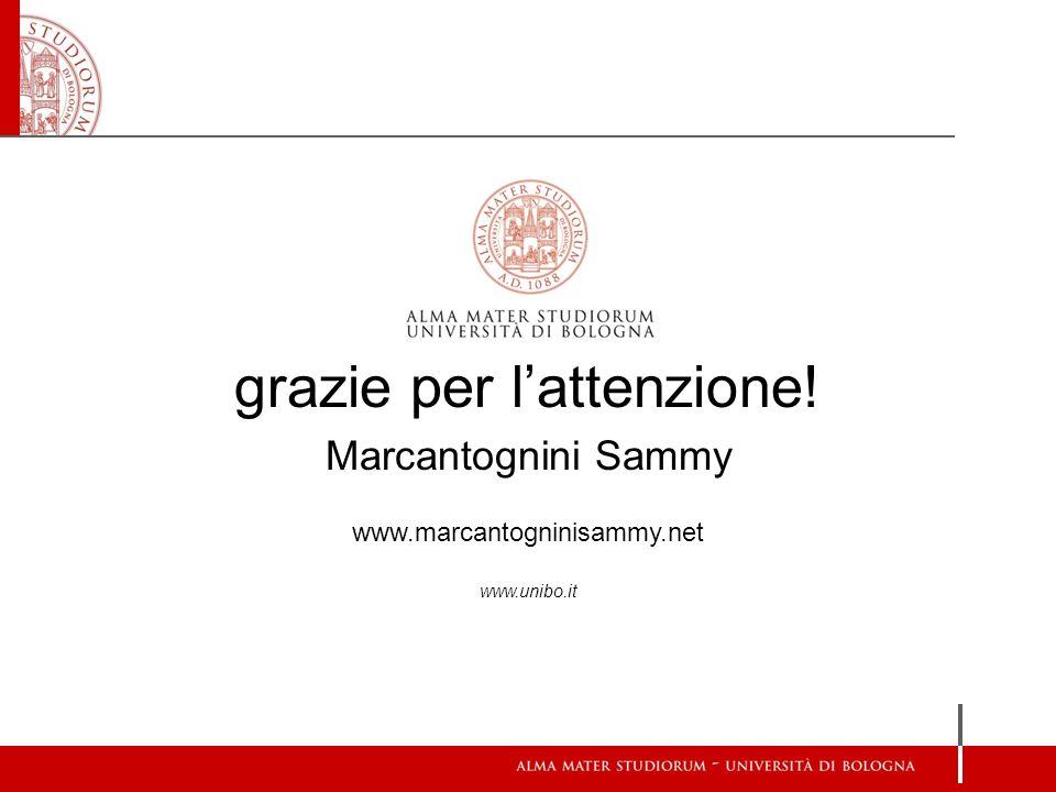 grazie per lattenzione! Marcantognini Sammy www.marcantogninisammy.net www.unibo.it