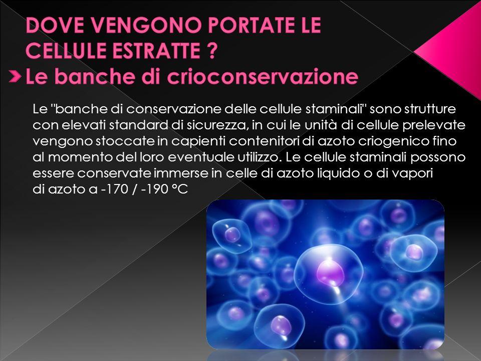 in alcuni ospedali è possibile effettuare la donazione delle cellule staminali cordonali, le quali vengono conservate presso banche situate in strutture pubbliche (la più grande è la Milano Cord Blood Bank presso l Ospedale Maggiore, ma ne esistono molte altre in tutta Italia).