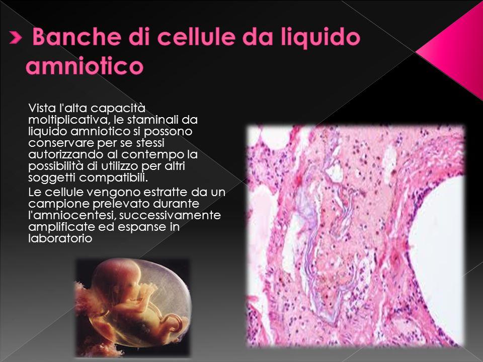 Vista l'alta capacità moltiplicativa, le staminali da liquido amniotico si possono conservare per se stessi autorizzando al contempo la possibilità di
