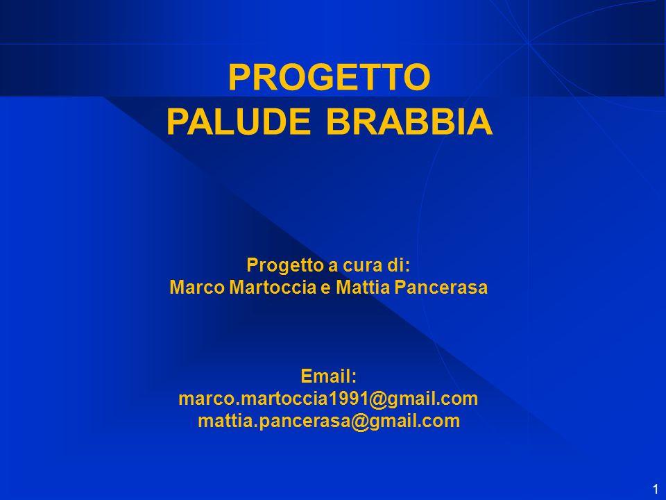 1 PROGETTO PALUDE BRABBIA Progetto a cura di: Marco Martoccia e Mattia Pancerasa Email: marco.martoccia1991@gmail.com mattia.pancerasa@gmail.com