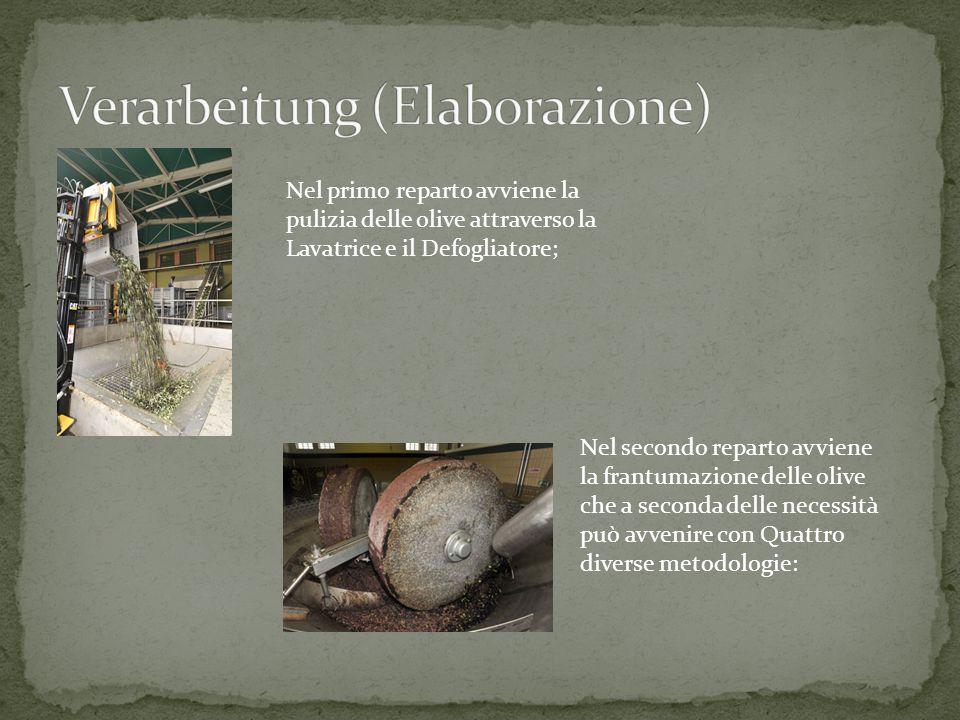 Nel primo reparto avviene la pulizia delle olive attraverso la Lavatrice e il Defogliatore; Nel secondo reparto avviene la frantumazione delle olive c