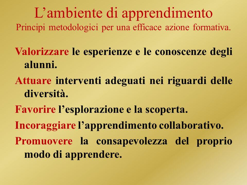 Lambiente di apprendimento Principi metodologici per una efficace azione formativa.