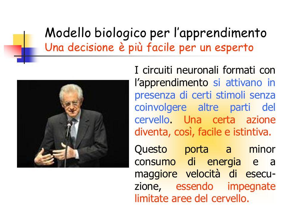 I circuiti neuronali formati con lapprendimento si attivano in presenza di certi stimoli senza coinvolgere altre parti del cervello.