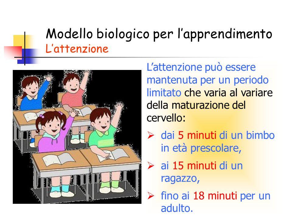 Lattenzione può essere mantenuta per un periodo limitato che varia al variare della maturazione del cervello: dai 5 minuti di un bimbo in età prescolare, ai 15 minuti di un ragazzo, fino ai 18 minuti per un adulto.