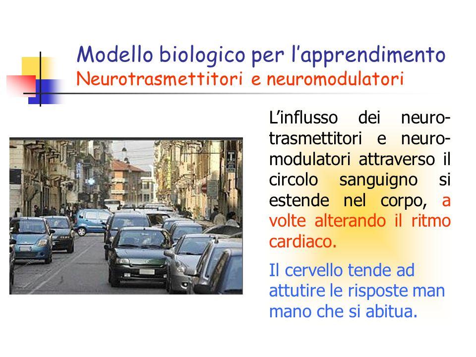 Linflusso dei neuro- trasmettitori e neuro- modulatori attraverso il circolo sanguigno si estende nel corpo, a volte alterando il ritmo cardiaco. Il c