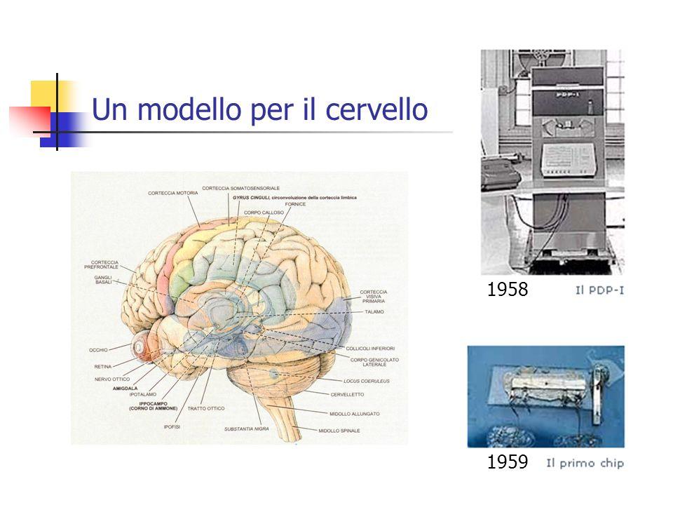 Un modello per il cervello 1958 1959