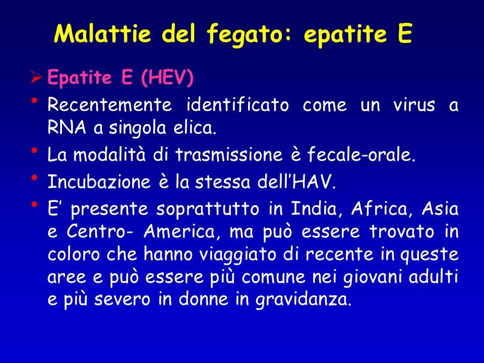 Epatite E (HEV) Recentemente identificato come un virus a RNA a singola elica. La modalità di trasmissione è fecale-orale. Incubazione è la stessa del