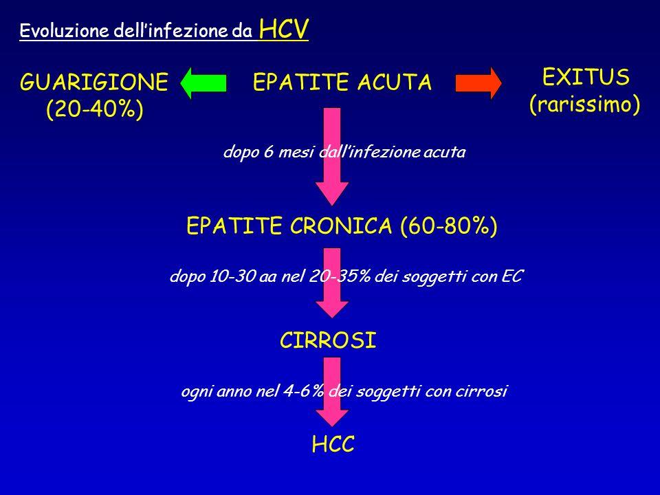 EPATITE ACUTA EPATITE CRONICA (60-80%) CIRROSI HCC GUARIGIONE (20-40%) EXITUS (rarissimo) dopo 6 mesi dallinfezione acuta dopo 10-30 aa nel 20-35% dei