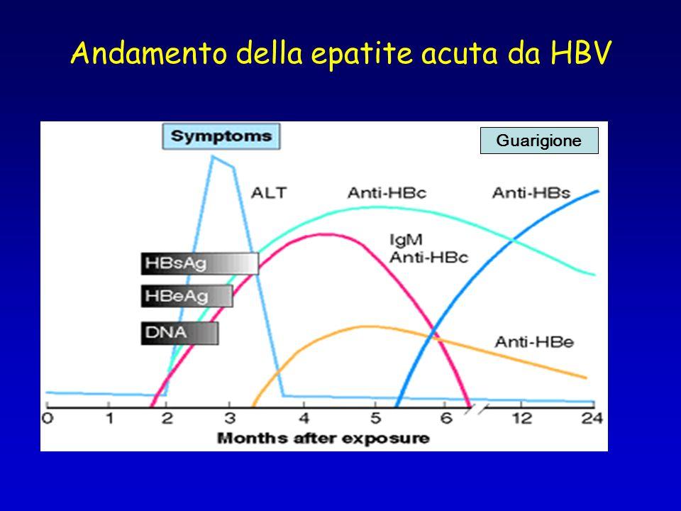 Andamento della epatite acuta da HBV Guarigione