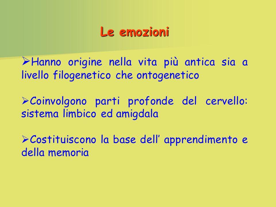 Le emozioni Hanno origine nella vita più antica sia a livello filogenetico che ontogenetico Coinvolgono parti profonde del cervello: sistema limbico ed amigdala Costituiscono la base dell apprendimento e della memoria
