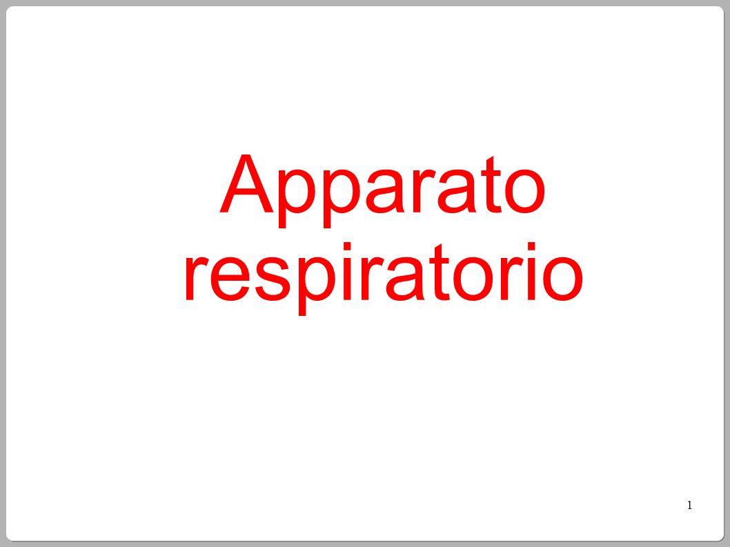2 Lapparato respiratorio Lapparato respiratorio fornisce ossigeno, elimina diossido di carbonio, e comprende: le vie respiratorie superiori (naso e faringe); le vie respiratorie inferiori (laringe, trachea, bronchi e polmoni).