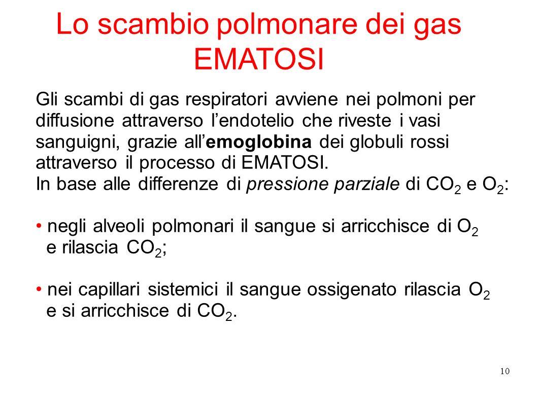 10 Lo scambio polmonare dei gas EMATOSI Gli scambi di gas respiratori avviene nei polmoni per diffusione attraverso lendotelio che riveste i vasi sang