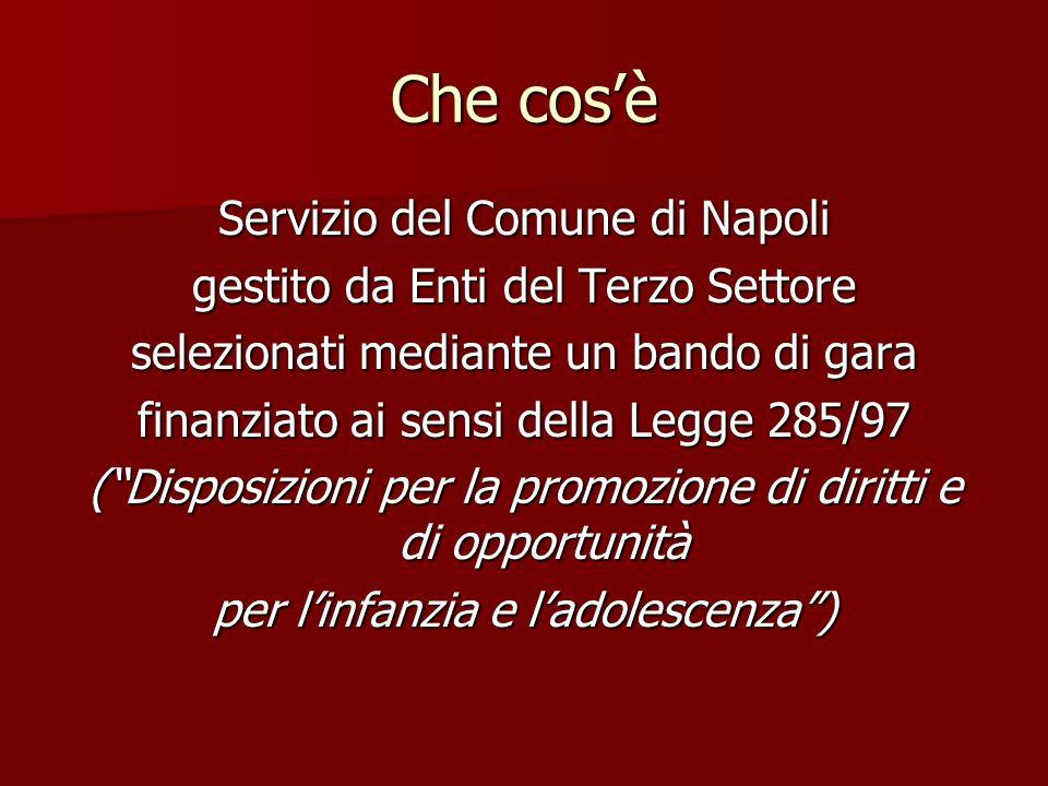 Che cosè Servizio del Comune di Napoli gestito da Enti del Terzo Settore selezionati mediante un bando di gara finanziato ai sensi della Legge 285/97 (Disposizioni per la promozione di diritti e di opportunità per linfanzia e ladolescenza)