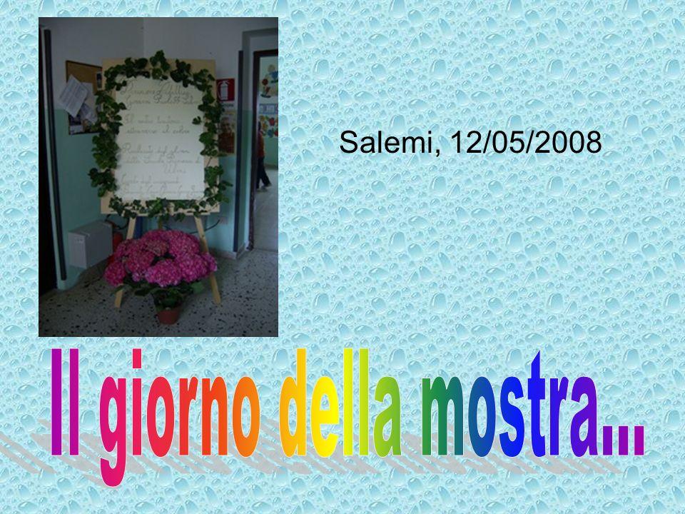 Salemi, 12/05/2008