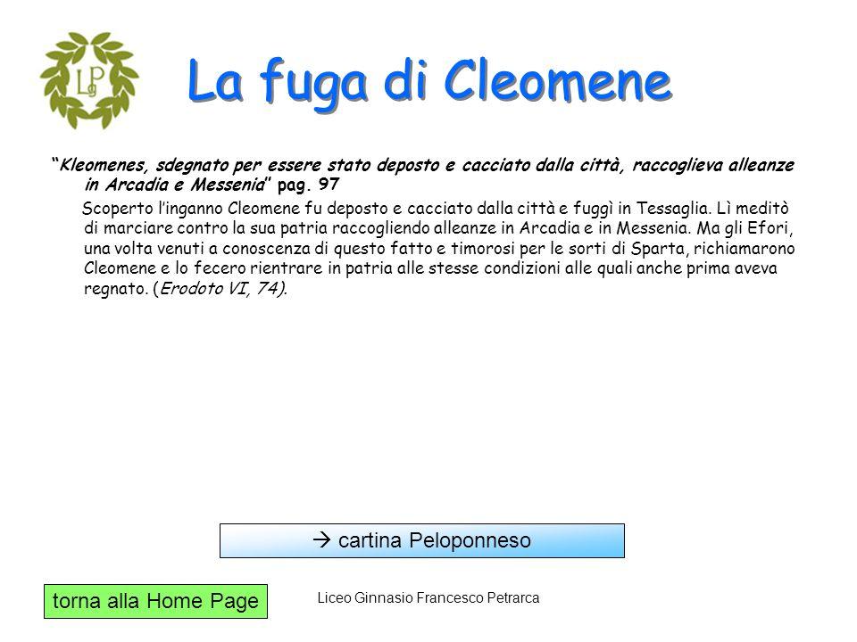 torna alla Home Page Liceo Ginnasio Francesco Petrarca La fuga di Cleomene Kleomenes, sdegnato per essere stato deposto e cacciato dalla città, raccog