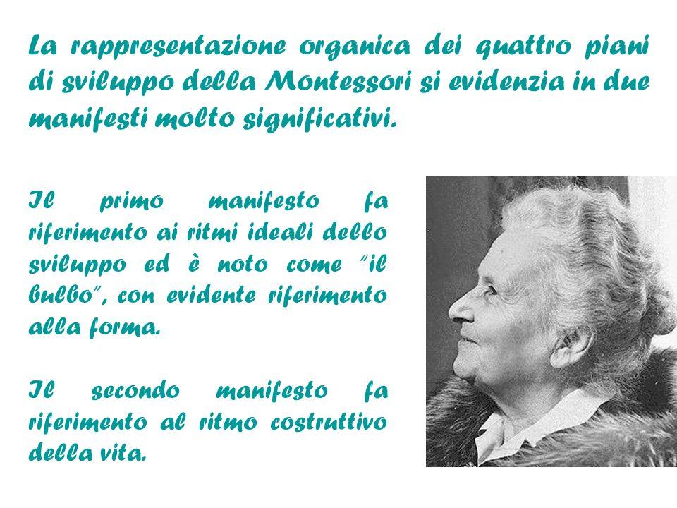 La rappresentazione organica dei quattro piani di sviluppo della Montessori si evidenzia in due manifesti molto significativi. Il primo manifesto fa r