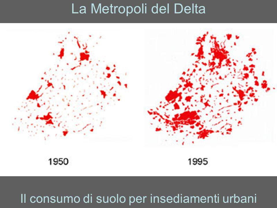 La Metropoli del Delta Il consumo di suolo per insediamenti urbani
