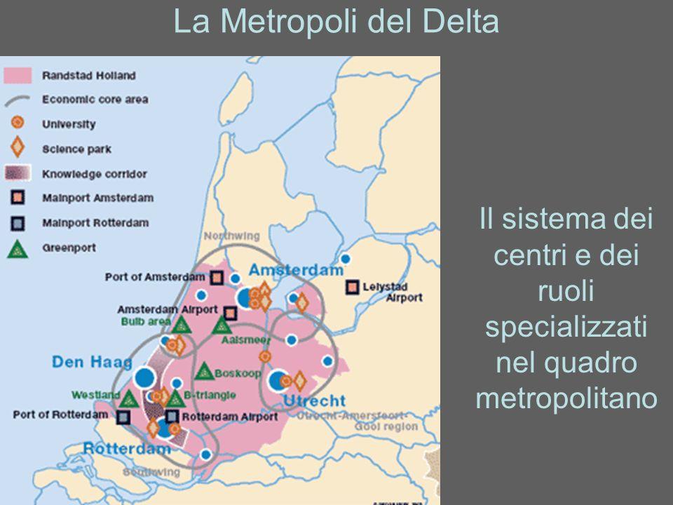 La Metropoli del Delta Il sistema dei centri e dei ruoli specializzati nel quadro metropolitano