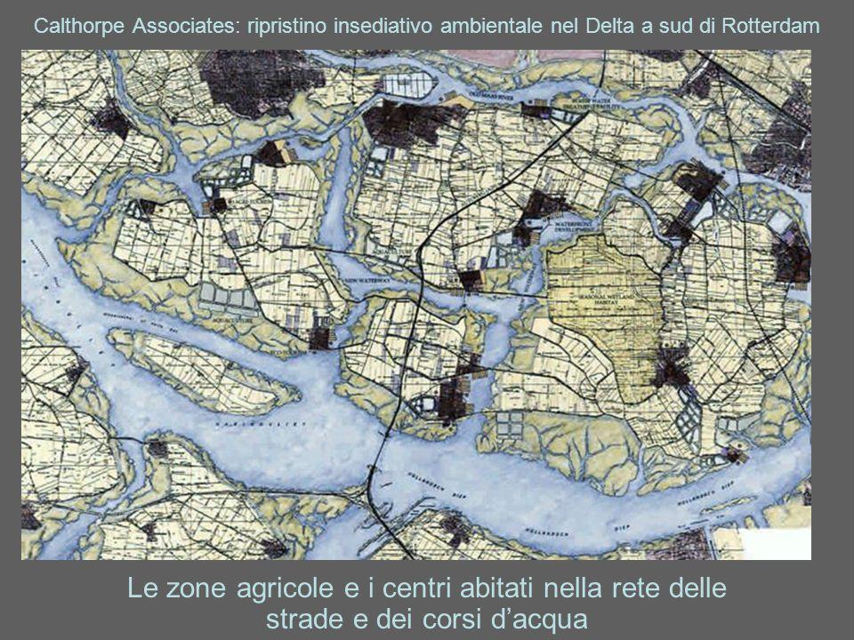 Calthorpe Associates: ripristino insediativo ambientale nel Delta a sud di Rotterdam Le zone agricole e i centri abitati nella rete delle strade e dei